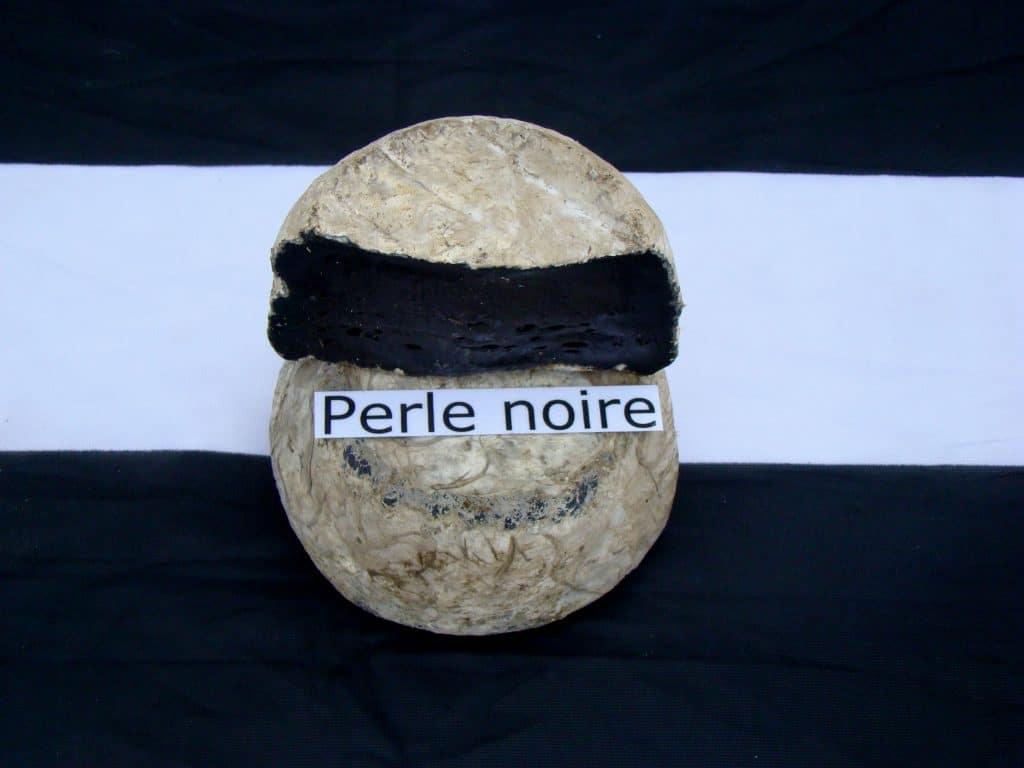 perle noire - fromage breton